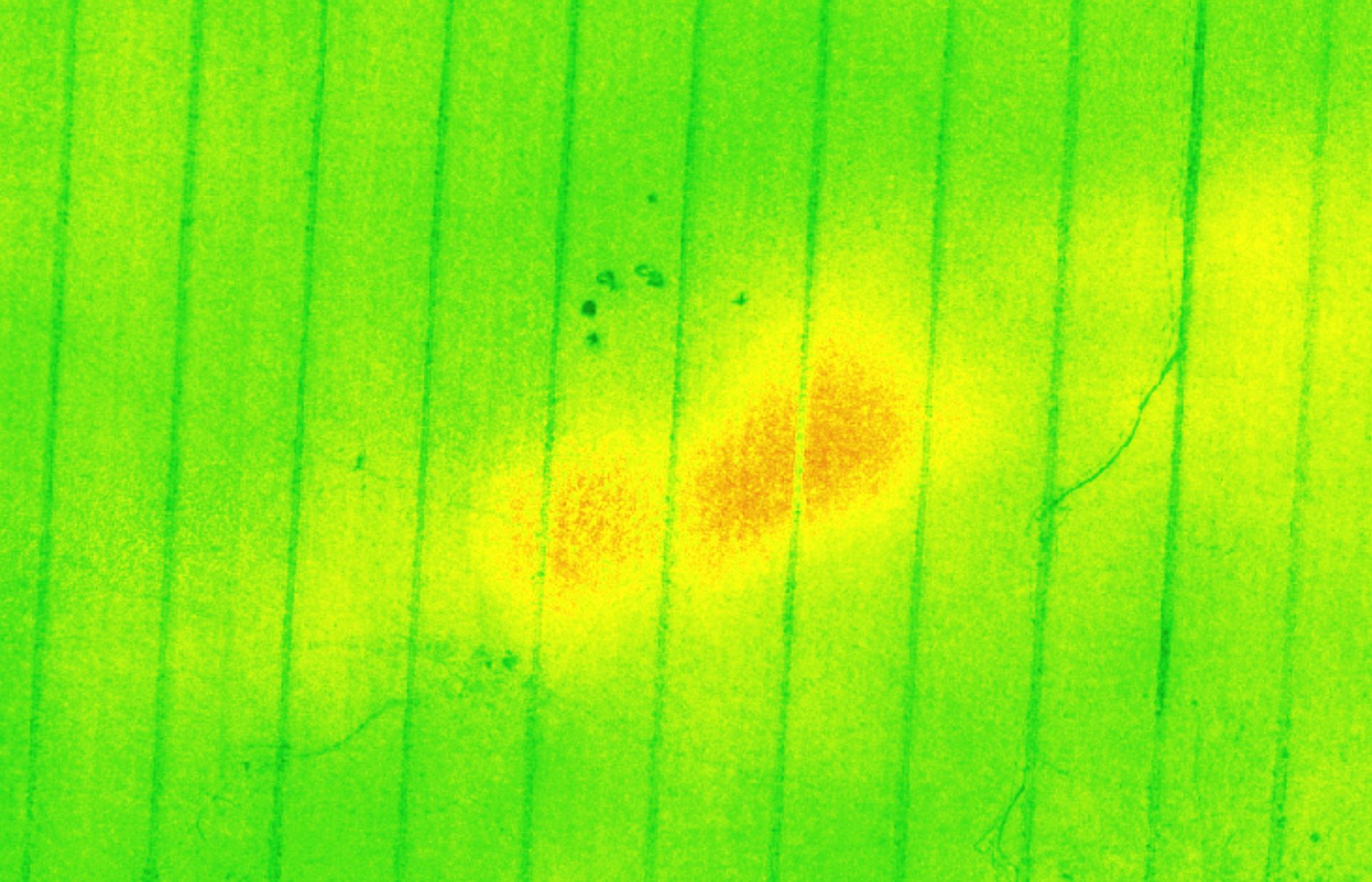 Indicador NDVI obtenido con la camara multiespectral instalada en un dron